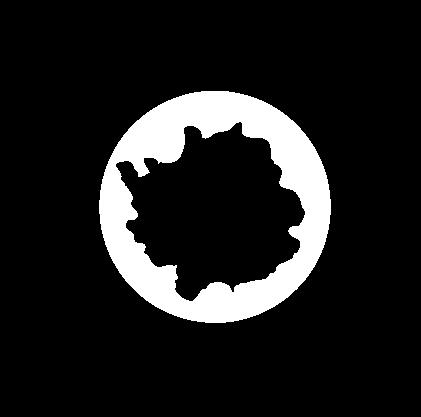Deposito Orgánicos o Inorgánicos